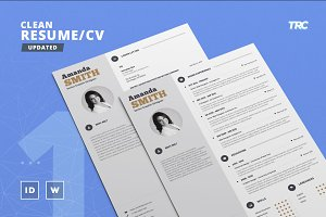 Clean Resume/Cv Template Volume 1