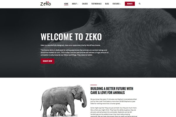 WordPress Non-Profit Themes: Anariel Design - Zeko - Non-Profit WordPress Theme