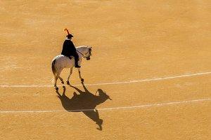 Bullfight in Madrid, Spain