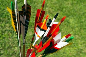 Colorful arrows for target archery
