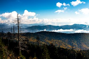 Mountain View at Clingman's Dome