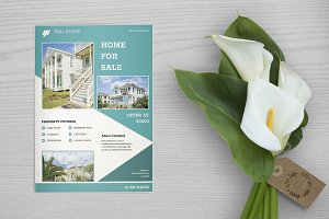 Real Estate Flyer Template V649