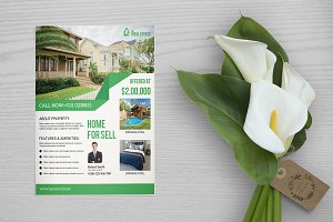 Flyer for Real Estate Company V651