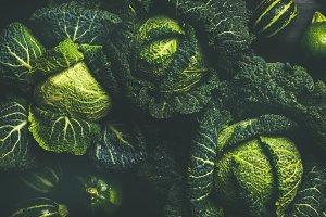 Raw fresh green cabbage texture
