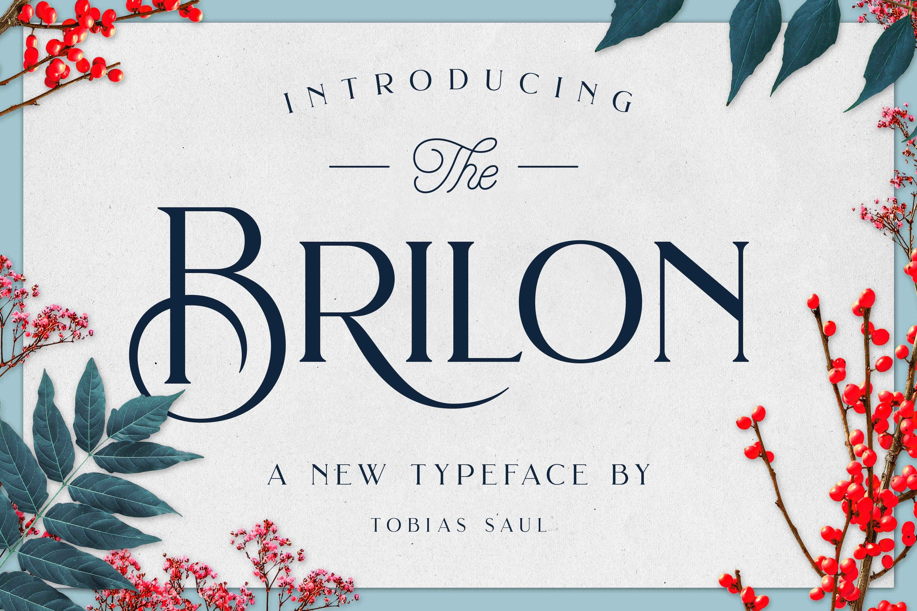 Brilon Font Extras Display Fonts Creative Market