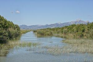 Wetlands Mallorca