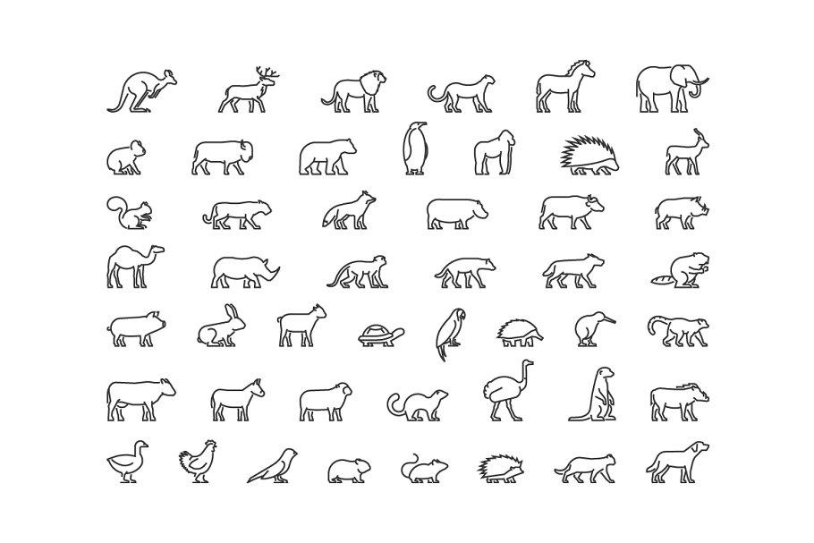 Big set of linear animals