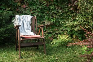 wooden chair in cottage garden