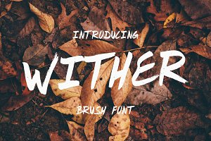 Wither - Brush Font