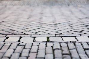 Green Through Concrete