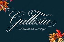 Gallisia Script