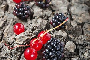 Redcurrant and blackberry