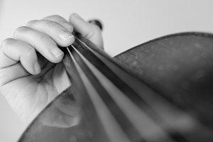 Violin. Musician. Music