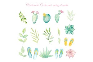 Watercolor cactus and spring element