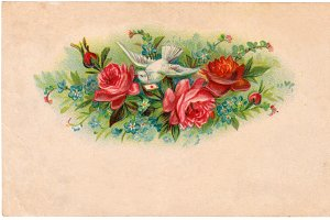 vtg greetings, roses