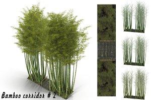 Bamboo corridor # 2