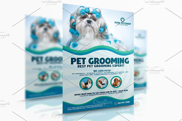 Pet Grooming Services Flyer Templates Creative Market