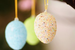 Branches with eggs decor