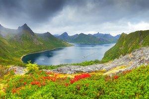 Autumn norvegian scene