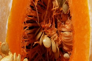 Ripe pumpkin cut with seeds