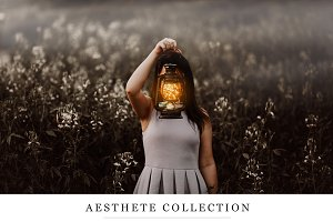Aesthete Ps Collection