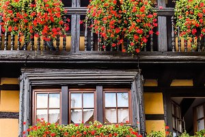 Beautiful window in traditional french house in Eguisheim near C