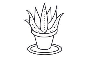 succulents, aloe pot vector line icon, sign, illustration on background, editable strokes