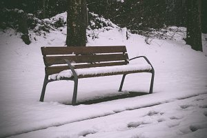 Bench in a park covered by the snow