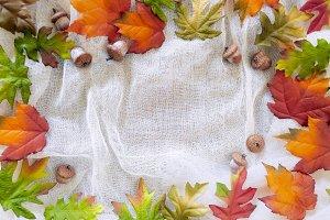 Fall season Theme Maple leaves Acorn