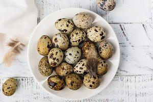 Quail eggs on white plate