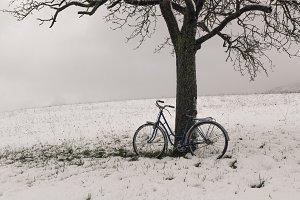 Vintage bicycle, tree and snow