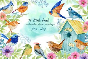 30 little birds.watercolor