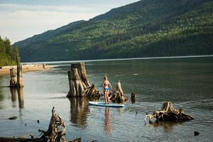 Rear view of woman paddleboarding by tree stumps in lake