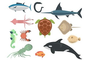 Vector sea animals creatures characters cartoon ocean underwater aquarium life water graphic aquatic tropical beasts illustration