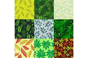 Leaves vector illustration nature summer, autumn leaf fall nature plant texture seamless pattern
