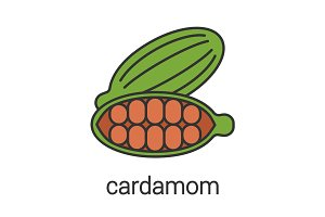 Cardamom color icon