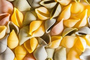 Typical Italian conchiglie pasta