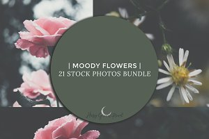 {Moody Flowers} 21 Stock Photos