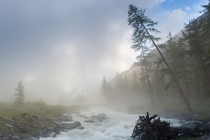 the river on a background of mountains and forests in the fog Akkem river, is at the foot of the Belukha mountain, Altai Mountains, Russia