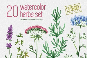 20 watercolor herbs set