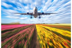 Landscape with passenger airplane is flying in blurred blue sky