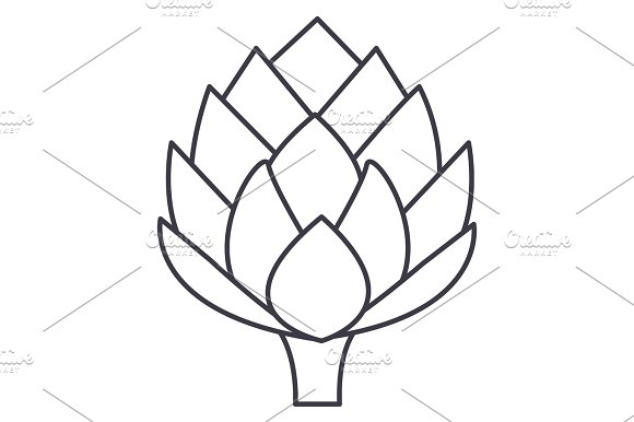 artichoke vector line icon, sign, illustration on background, editable strokes