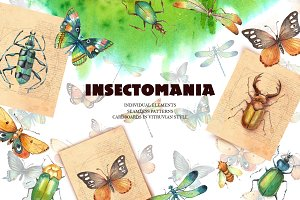 INSECTOMANIA- collection of insects