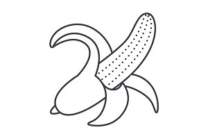 banana vector line icon, sign, illustration on background, editable strokes