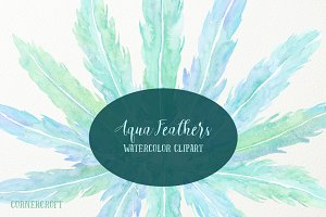 Watercolor Aqua Feathers
