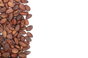 unpeeled cocoa bean isolated on white background with copy space for your text. Top view