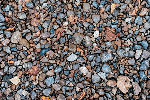 Wet stones in park on the road, paving stones. In the city by the wayside. Autumn day colorful boulders.