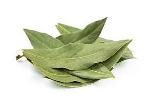 Aromatic bay leaf