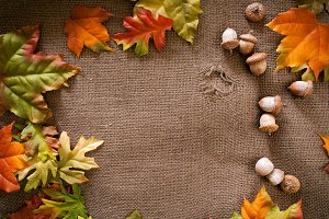 Fall Colours on burlap background