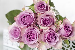 Purple Roses Bouquet